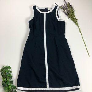 Banana Republic Black with White Stripe Dress.